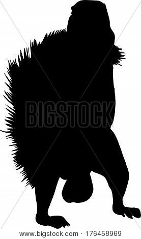 Silhouette of a standing ground squirrel - digitally hand drawn vector illustration