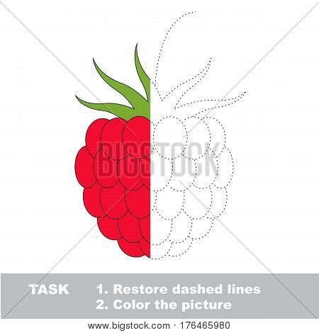 Raspberry in vector to be traced. Restore dashed line and color the picture. Easy educational kid gaming with simple level of difficulty.