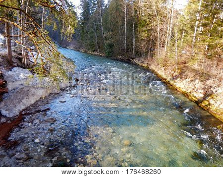 Crystal Clear River Stream In Mountain Forest