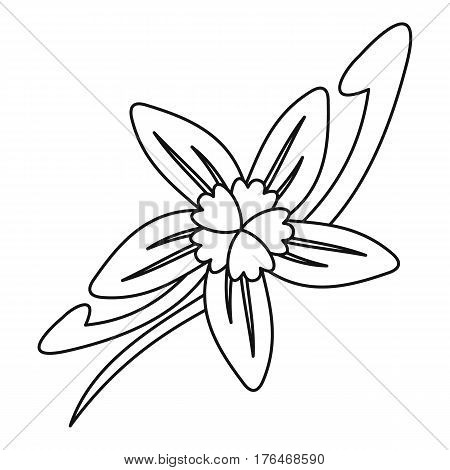 Vanilla flower icon. Outline illustration of vanilla flower vector icon for web