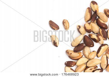 Brazilian Nuts Frame. Castanha Do Para