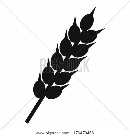 Dried wheat ear icon. Simple illustration of dried wheat ear vector icon for web