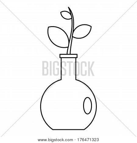 Seedling in a vase icon. Outline illustration of seedling in a vase vector icon for web