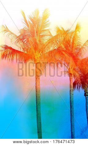 Retro photo of palm trees on a tropical island