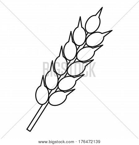 Ear of wheat icon. Outline illustration of ear of wheat vector icon for web