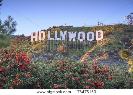 HOLLYWOOD - CALIFORNIA FEBRUARY 24 2017: The Hollywood sign built in 1923 is world famous landmark and American cultural icon on Mount Lee