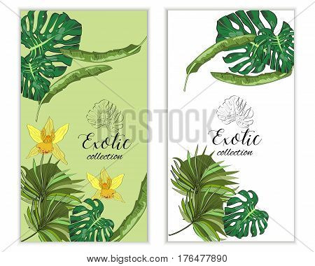 Vertical Vectror Banners With Hand Drawn Tropical Flowers And Leaves. Package Design.