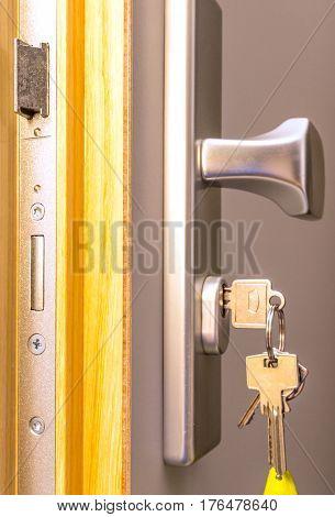 Open door with keys, key in keyhole.