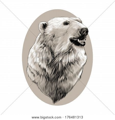 the head of the polar bear profile looking to the side sketch graphics vector black and white pattern on a brown background of the oval circle