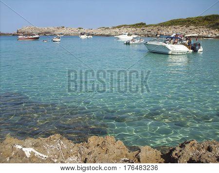 En la playa de Cala Agulla en buena compañia