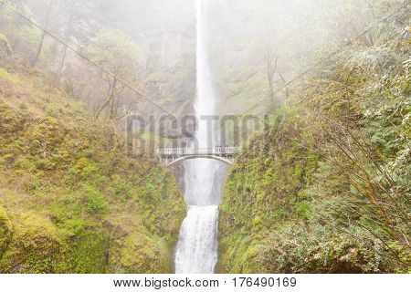 Multnomah Falls And Benson Footbridge