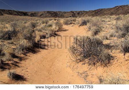 Rinconada Trail, Petroglyph National Monument, Albuquerque, New Mexico