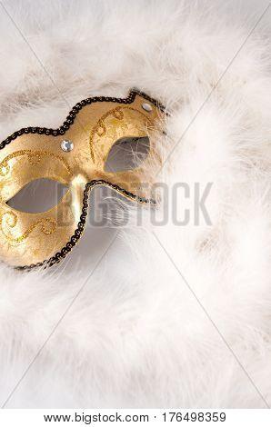 Carnival Mask And White Boa. Theatre Day