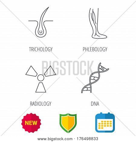 Phlebology, trichology and DNA icons. Radiology linear sign. Shield protection, calendar and new tag web icons. Vector