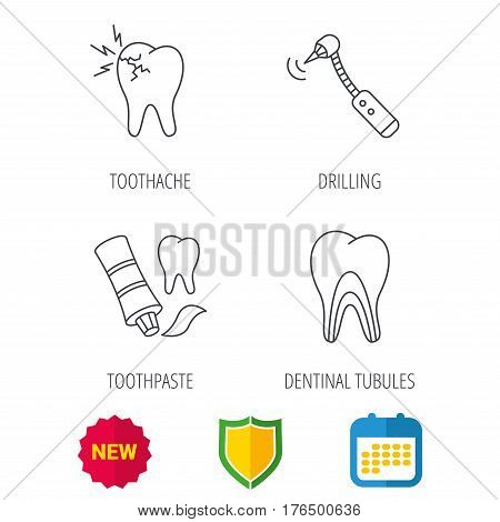 Toothpaste, dental tubules and toothache icons. Drilling tool linear sign. Shield protection, calendar and new tag web icons. Vector