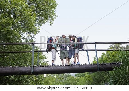 Four teenagers (16-17 years) backpacking in forest, reading map on bridge