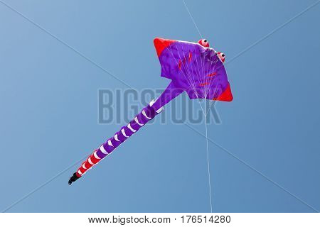 Colorful kite flying in blue sky. Marine creature. Stingrays.