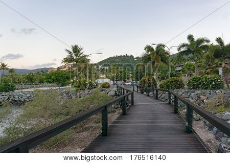 Tropical wooden landscape with palm trees and wooden pathway