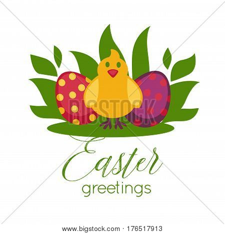 Easter greeting card template design and text of paschal eggs and happy chicken chick in april spring grass on white background