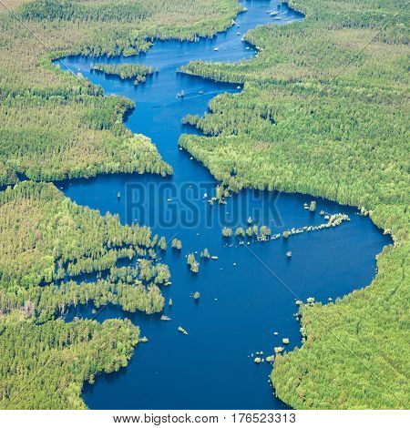 Aerial view flooded forest plains in spring.