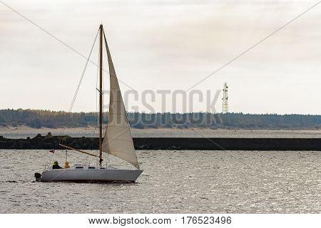 Small White Sailboat