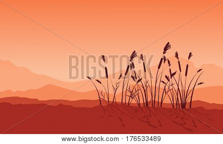 Beauty landscape of coarse grass silhouettes vector art