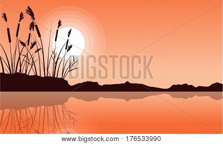Silhouette of coarse grass on lake landscape vector illustration