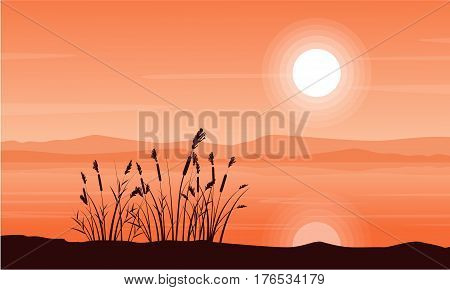 Beauty landscape of coarse grass with mountain landscape vector