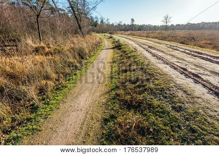 Bent sandy path in a rural landscape in the autumn season.