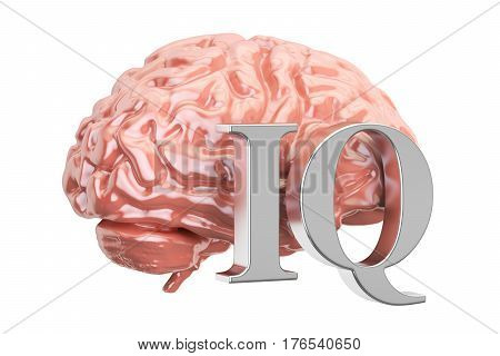 Human brain and IQ text 3D rendering