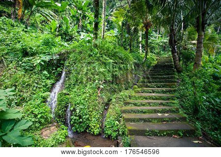 Old stone stairs in the jungle with a waterfall lush tropical greenery Bali Indonesia