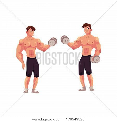 Man bodybuilder, weightlifter doing bicep workout, training arms with dumbbells in two positions, cartoon vector illustration isolated on white background. Male bodybuilder doing bicep workout