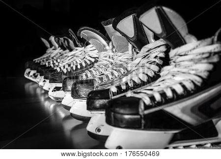 Pairs of hockey skates lined up in a locker room