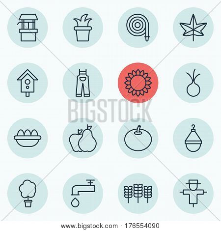 Set Of 16 Planting Icons. Includes Autumn Plant, Radish, Ovum And Other Symbols. Beautiful Design Elements.