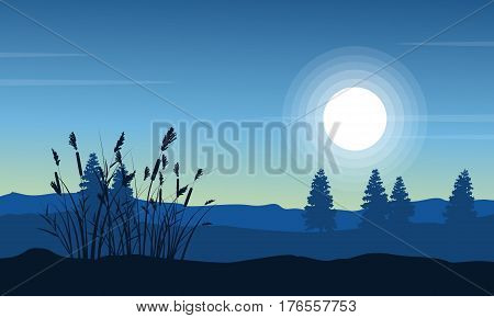 Silhouette of coarse grass on desert landscape vector art