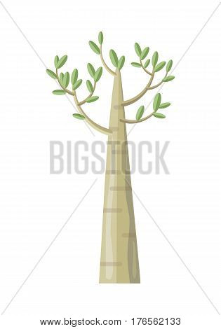 Poplar tree with green leaves. Vector tree icon. Tree forest, leaf tree isolated, tree branch nature green, plant eco branch tree, organic natural wood illustration. Vector illustration