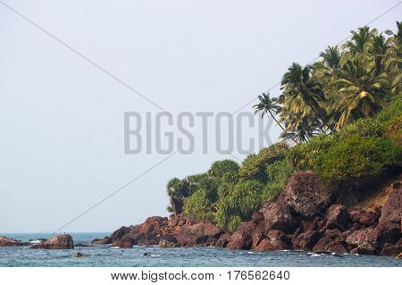 Background with a view of the beautiful beach with a rocky beach and a palm tree in Goa India