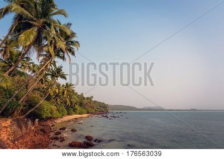 Beautiful view of beach near ocean and palm trees in India
