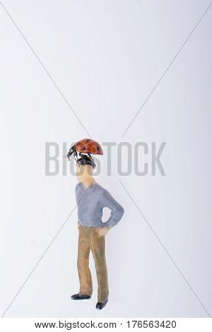 Ladybug walking on body of figurine man