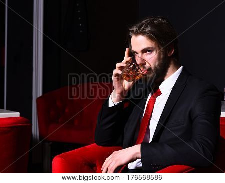 Bearded Man, Businessman Holding Glass Of Whiskey In Red Chair