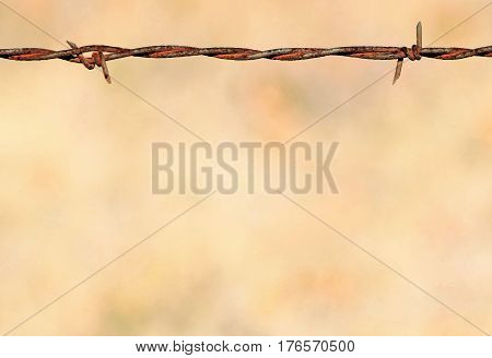Close-up of a section of rusted barbed wire fence on light brown background. Room for text and can be used as background or border.