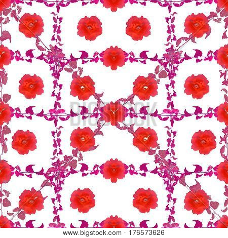 Digital collage and photo manipulation technique nature floral motif seamless pattern design in vivid red and purple tones against white