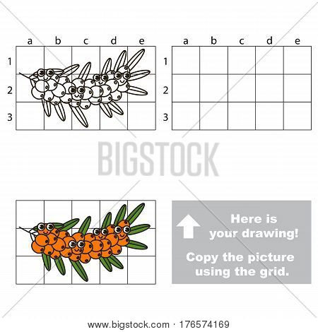 Copy the picture using grid lines. Easy educational kid game. Simple level of difficulty. Copy the Buckthorn Branch.
