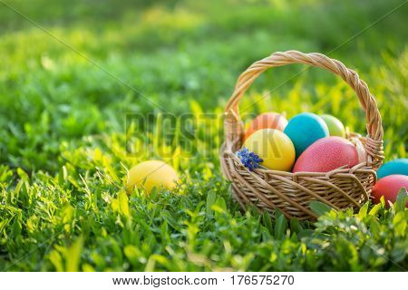 Happy Easter. Colorful Easter eggs in a basket. Easter background with copyspace