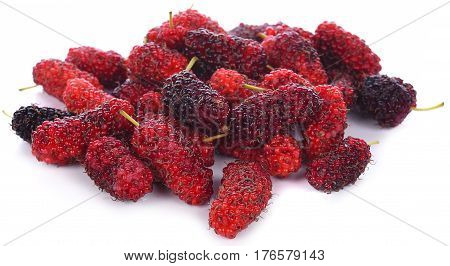 mulberry isolated on the white background .