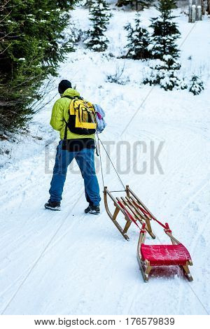 Person is pulling sledge on the mountain road in woods. Active people in the winter sports activities with sleigh on snowy sliding forest road.