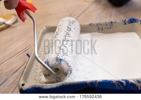 Paint Tray With White Paint And Roller, Painting The Wall