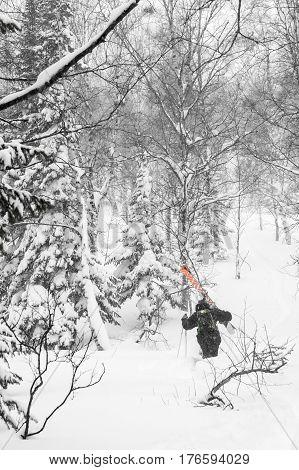 Freeride run in Siberian forest powder run