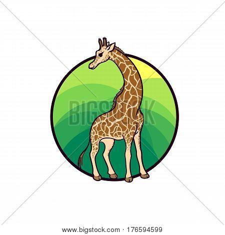 Animal art cute cartoon style hand drawn vector illustration. Giraffe lives in African savannahs and woodlands. Cartoon style