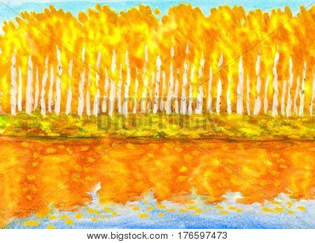 Hand painted picture watercolours - autumn landscape yellow-orange birch forest with reflection in water.